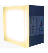 LED Брусчатка светящиеся плитка RengEL 90*90*60 1,8W 12V IP 68 Белый теплый