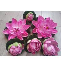 Кувшинки для пруда розовые 6 шт